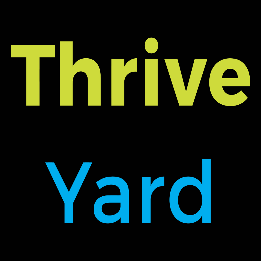 ThriveYard-Career-Blog